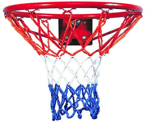 Rebound Ring and Net