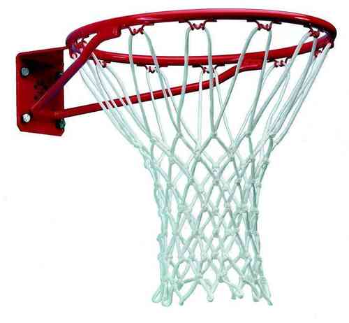 Heavy Duty Basketball Ring and Net